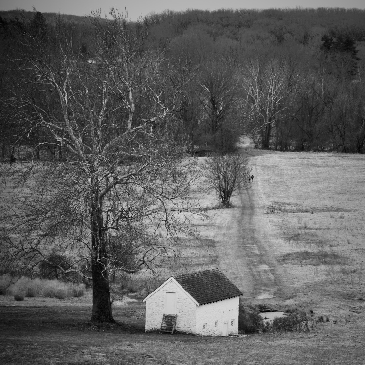 Valley Forge II